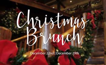Christmas brunch logo
