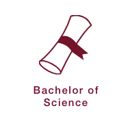Bachelor of Science Icon